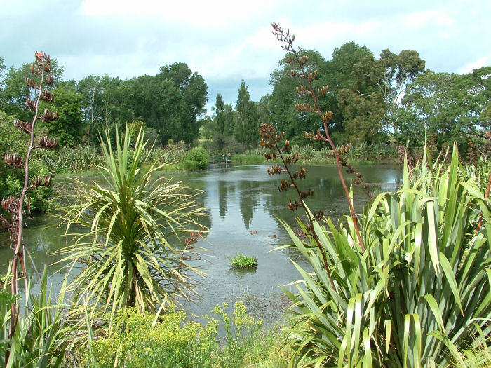 Image result for Point england reserve