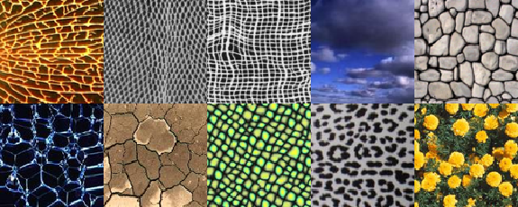 Includegraphics Width 5in Texture Wgeneous Png Eps